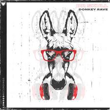 DONKEY RAVE