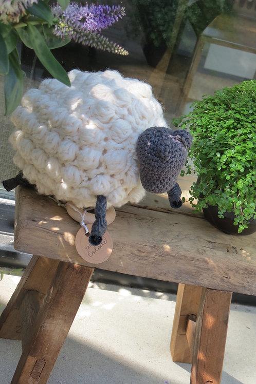 Léon, le mouton musical