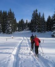 skiing in kananaskis