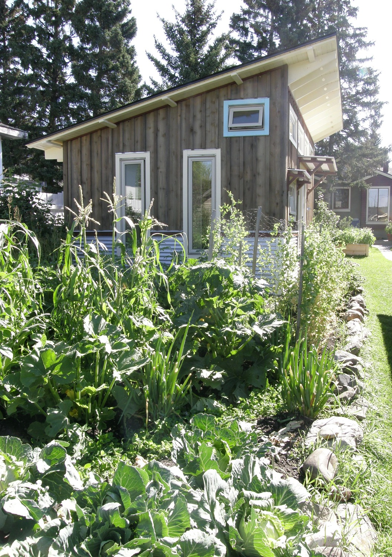 garden adjacent to tiny house