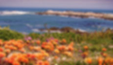 Heritage-Five-Bay-trail1.jpg