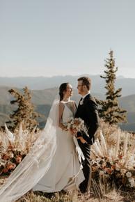 Photography: @alyssabrookephoto⠀ Wedding planning: @willowandivyevents⠀ Videography: @ashleyloyer⠀ Florals: @petalandvine_⠀ Wedding cake: @hannahs.bakes⠀ Dress: @sarahseven⠀ Suit: @indochino⠀ Rentals: @balancingballoons @yayparties⠀ Catering: @grateboards ⠀ Cheese Board Arranging: @aldenscheeseboards