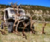 Trophy Colorado and Utah Elk Hunting