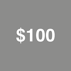 $100.png