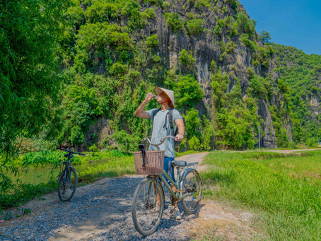 Ninh Binh Day Tour  (下)|寧濱Tam Coc|愜意的騎腳踏車徜徉金黃色稻田中