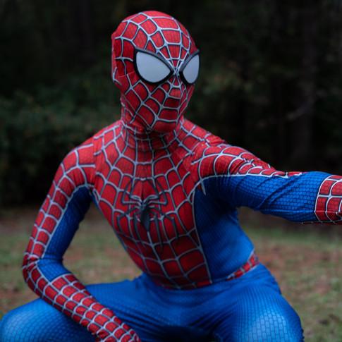 spiderman for rent georgia