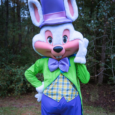 Macon Easter Bunny Rental