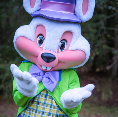 Easter bunny character rental