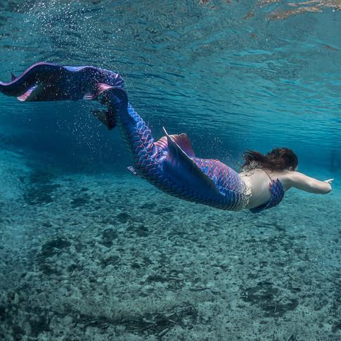 Macon Mermaid