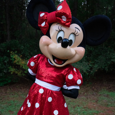 Minnie Mouse for rent
