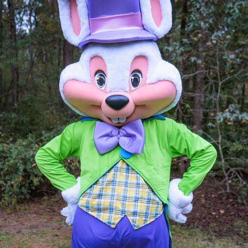 Easter Bunny for Hire Atlanta