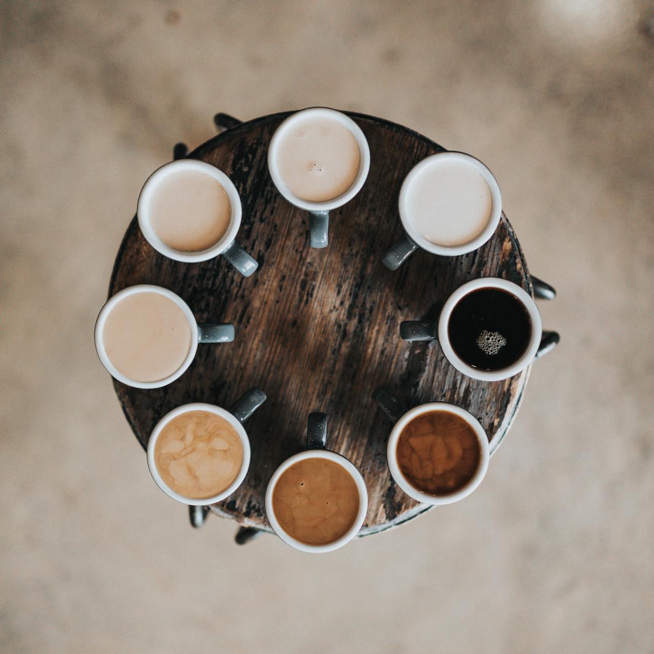 Kaffeebohnen (2)
