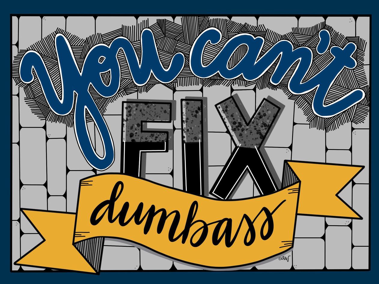 you cant fix dumbass.jpg