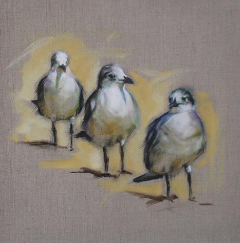 """So Three Gulls Walk into a Bar..."""