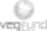 GAS_VEQ_Logo_FUND_4C_2019_silber.png