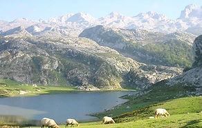 Lago Enol en la montaña de Covadonga