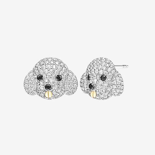 Bicon Earrings