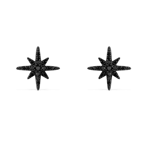 Meteorites Noires Silver Stud Earrings