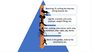 """Figure 2.This is called """"pyramid of physical activities"""" is an intuitive tool to explain which activities are better for our health."""