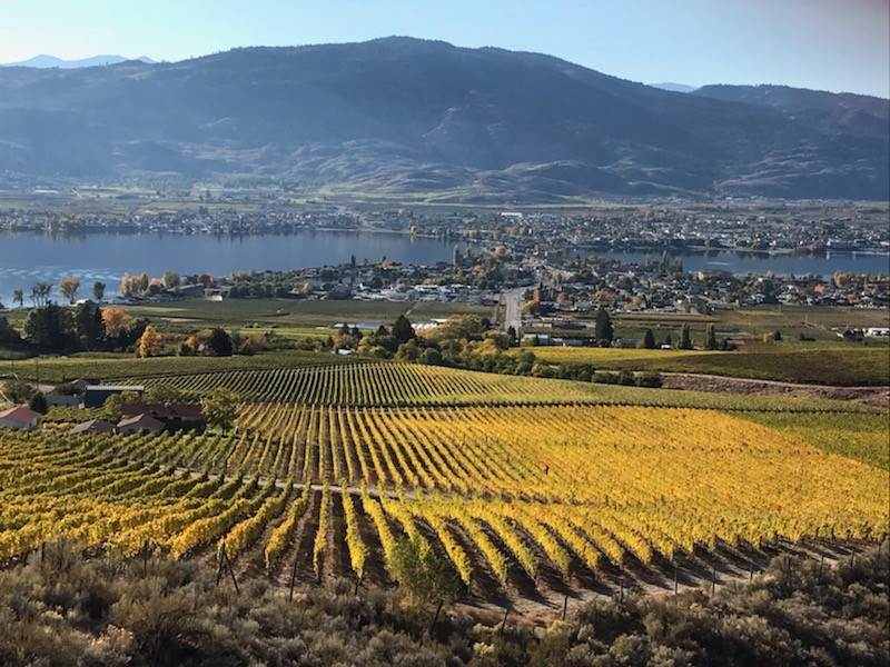 Osoyoos, 20 minute drive away.