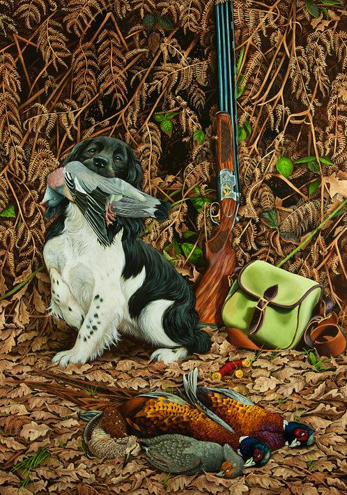 Spaniel and gun