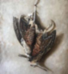 image1[1486].JPG