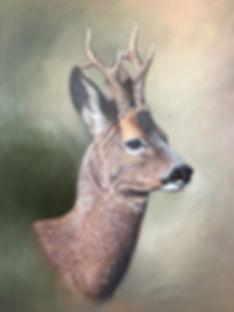 Roe deer, Roe buck, oil painting, roe deer painting