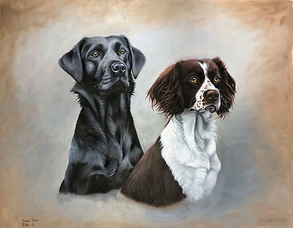 dog portrait, oil painting, labrabor, springer spaniel.