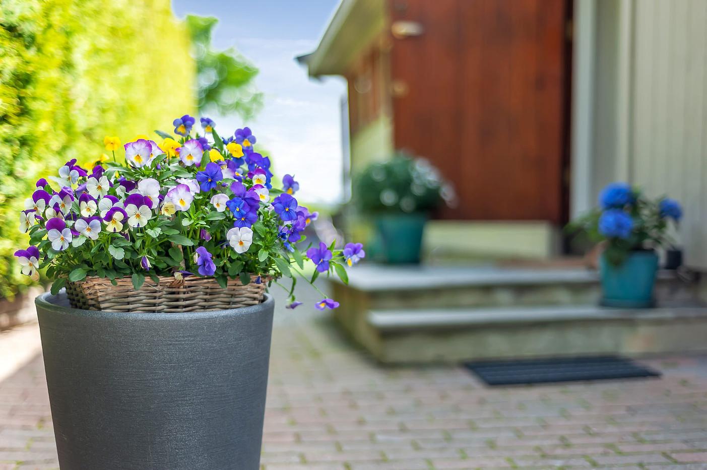 Blomster 14.jpg