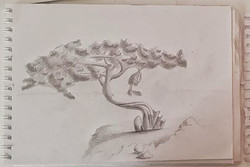 Дерево, карандаш. Автор_ Виктория