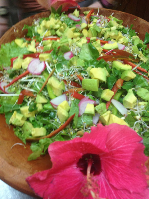 Highlights from the 2014 Mariposa Cleanse