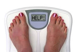 Are toxins making us fat?