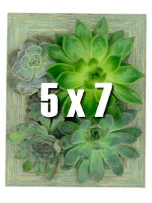 Portrait Gardens Wall Planter (5x7)
