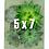 Thumbnail: Portrait Gardens Wall Planter (5x7)