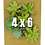 Thumbnail: Portrait Gardens Wall Planter (4x6)
