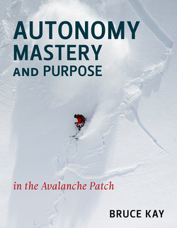 Autonomy-Mastery-and-Purpose-in-the-Aval