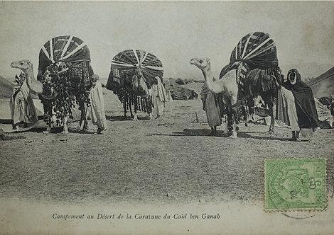 """Caravane d'hier"" campement du caïd Ben Ganab - Photo n°14"