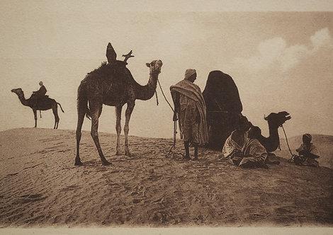 """""""Caravane d'hier"""" Halte au désert - Photo n°  3"""