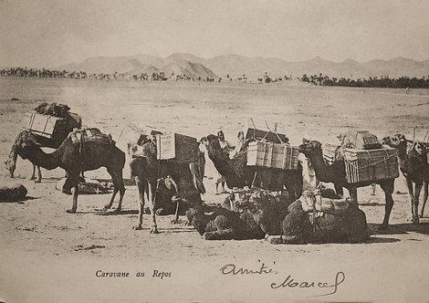 """""""Caravane d'hier"""" au repos, """"Amitiés, Marcel"""" - Photo n° 8"""