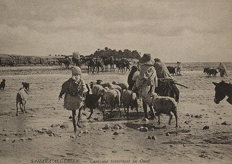 """""""Caravane d'hier"""" traversant l'oued - Photo n° 10"""