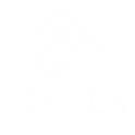 Sipila Consulting7.png