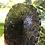 Thumbnail: Small Peacock Slider