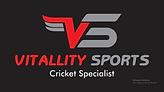 Vitallity Sports Logo.png