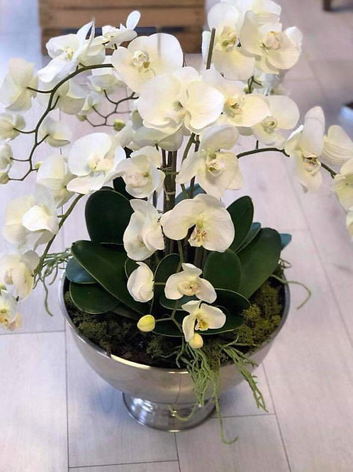 Orchid Sil Flowers