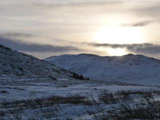 Nice hike near Fish Lake (Yukon) / Belle randonnée près de Fish Lake (Yukon)