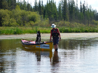 Buffalo Narrows (SK) to Fort Chipewyan (AB) / July 21 - August 17, 2016