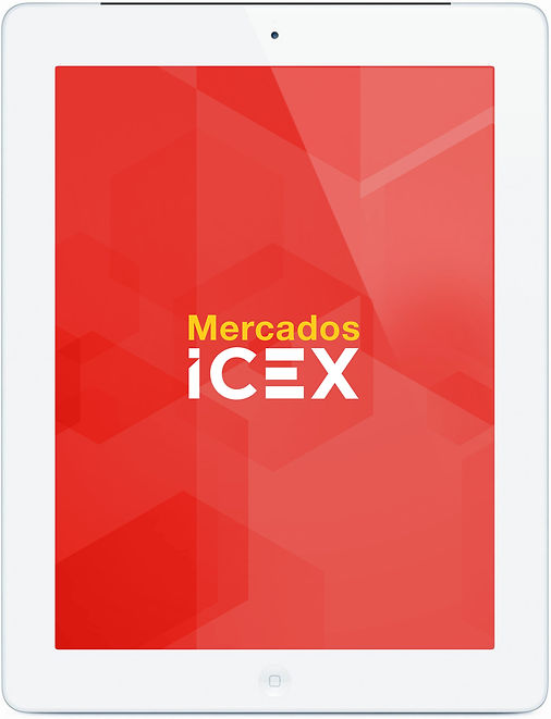 iPad Icex.jpg