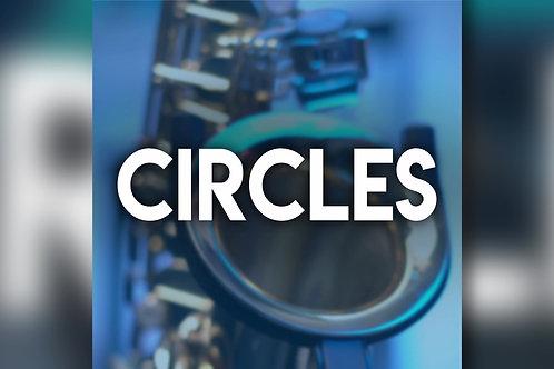 Post Malone - Circles - Backing Track
