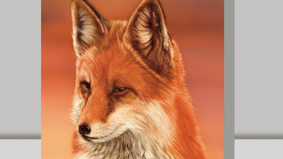 Greetings Card - Mrs Fox