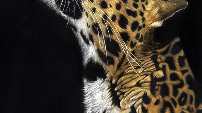 British Wildlife Artist Amur Leopard painting